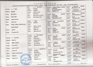 Арика 6180 род.JPG